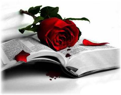 Sant Jordi. Libro y Rosa